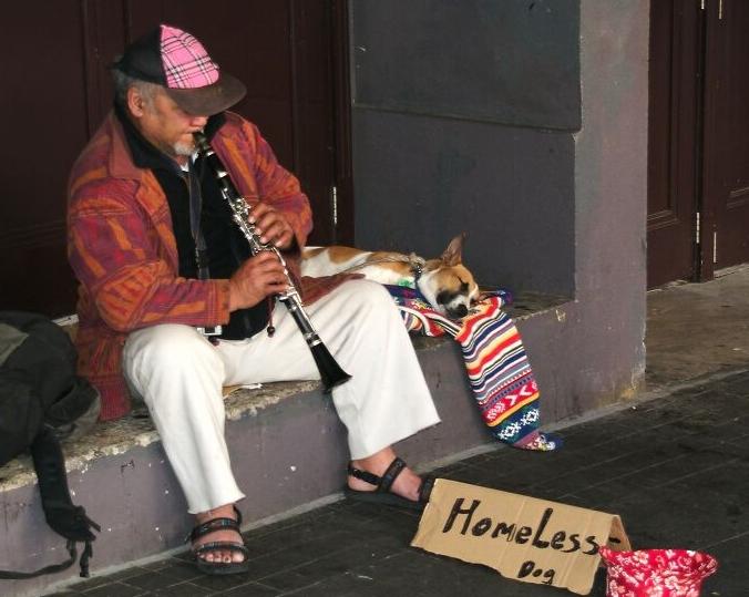 бездомный музыкант сша